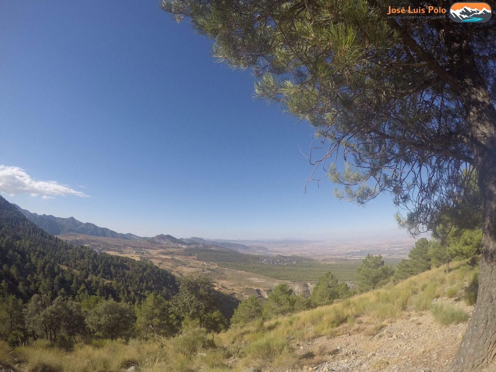 Cerro Huenes (129) Original